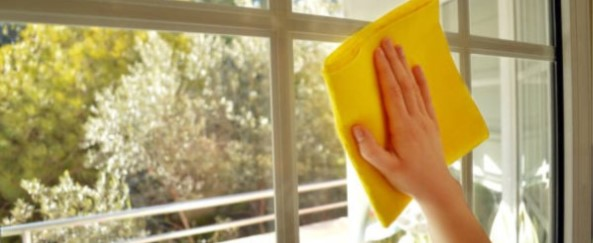 Why Hire a Professional Window Cleaning Service?